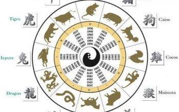 Ce animal esti in zodiacul chinezesc?