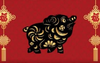 Cum sa profitam de Anul Porcului de Pamant