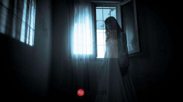 dictionar de vise fantome